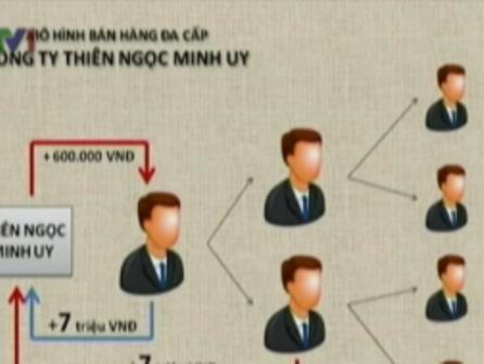 Mô hình bán hàng đa cấp của công ty Thiên Ngọc Minh Uy